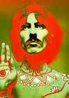 BEATLES (GEORGE HARRISON POP ART PRINT) 01A PHOTO PRINT