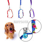 Flower Studded Dog Puppy Collar Leash with Bell Nylon Small Pet Collar