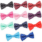 DQT Mens Pre-Tied Bow Tie High Quality Polka Dot Casual Party Necktie