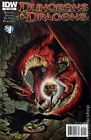 Dungeons and Dragons (2010 IDW) #0B NM