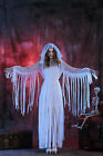 Ghostly Zombie Bride Ladies White Halloween Costume Scary Vampire Fancy Dress Up