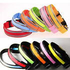 FLASHING LED LIGHT REFLECTIVE SAFETY DOG PET COLLARS DOG TAG LIGHT ALSO AVAILABL