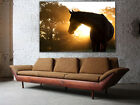 "Horse In Sunset Huge Wall Art Canvas Print Ready To Hang Or Rolled Up To 60""x40"""