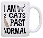 Cat Lover Gifts I Am 2 Cats Past Normal Crazy Cat Lady Gag Coffee Mug Tea Cup