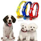 NEW Colorful Glossy Reflective Safety Buckle Small Dog Puppy Cat Collar & Bell