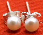 SALE Tiny 4mm Natural White Freshwater flat round Pearl Earring s925 stud-ear281