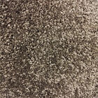 Taupe BROWN Thick SOFT Carpet | ACTION BACK | Bedroom Lounge CHEAP 4M Width