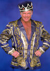 JERRY LAWLER 01 (WRESTLING) PHOTO PRINT
