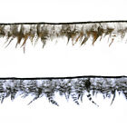 BaBarred Plymouth Rock fowl Feather Fringe Trim 1-5 yards Sewing Costume party