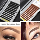 Brow Building 0.10mm Thick Curl False Mink Individual Eyebrow Extensions 5/6/7mm