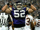 Chad Greenway Minnesota Vikings NFL Football Sport POSTER Affiche on eBay