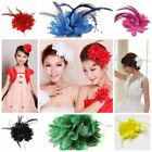 Beauty Flower Feather Brooch Fascinator Corsage Chic Wedding Ball Head Hair Clip