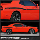 Dodge Challenger 2008-2019 Yellow Jacket Style Side Stripes Decals -Choose Color