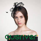 Premium Spring Racing Race Party Melbourne Cup Black Circle of Netted Fascinator