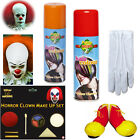 IT Clown Stuff Makup, Haircolour,Shoes,Gloves Halloween Fancy Dress Accessories
