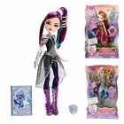 Ever After High Dragon Games Doll Accessories Fashion Outfit Raven Holly Darling