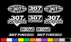 10 DECAL SET 307 CI V8 POWERED ENGINE STICKERS EMBLEMS SBC VINYL BADGE DECALS