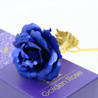 24K Gold Plated Rose Flower Valentine's Day Gifts Birthday Romantic Flowers Hot