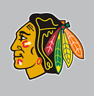 Chicago Blackhawks NHL Hockey Full Color Logo Sports Decal Sticker $1.99 USD on eBay