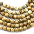 Natural Picture Jasper Loose Round Bead 15