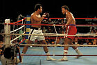 GEORGE FOREMAN 08 vs MUHAMMAD ALI (BOXING) MUGS AND PHOTO PRINTS