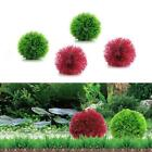 Marimo Ball Filter Live Aquarium Aquatic Plants Fish Shrimp Tank Pet  Decor