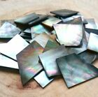 2 oz. Irregular Shell Guitar Inlay Mosaic Abalone White Mother of pearl Tahiti  for sale