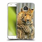 HEAD CASE DESIGNS WILDLIFE SOFT GEL CASE FOR MOTOROLA PHONES