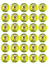 30 Edible Personalised Photo Cupcake Cake Toppers Wafer Rice Paper Icing Sheets