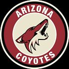 Arizona Coyotes Circle Logo Vinyl Decal / Sticker 5 Sizes!!! $3.99 USD on eBay