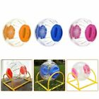 Kyпить Exercise Large Hamster Ball Gerbil Rat Small Pet Activity Play Toy  Luxury Hot на еВаy.соm