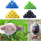100x Bird Poultry Parrot Chicks Plastic 1-100 Numbered Pigeon Leg Bands Rings Co