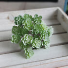 Mini Succulent Plants Leaves Home Room Table Desk Top Display Ornament Decors