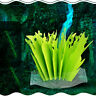 50AE Green Leaf Air Humidifier Green Leaf Humidifier Airpurifier Aquarium