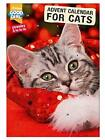 Good Girl Cat Advent Calendar Tasty Catnip Treats Countdown Xmas Favourite Felin