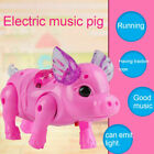 Electric Walking Singing Musical Light Pig Toy+Leash Interactive Kids Toy Gift