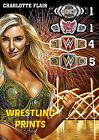 #144 MAKE YOUR SELECTION WWE NXT CHARLOTTE FLAIR A4 A3 A2 A1 230GSM POSTER ART