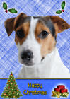 Jack Russell Dog Christmas Card - Free Delivery