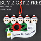Personalized Family Name Christmas Ornaments Quarantine Xmas Toilet Paper Mask