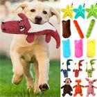 Pet Gogs Chew Toys Squeaker Catnip Pillow Cat Grinding Play Toys Teeth Scratch