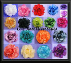 NEW LARGE 12cm SILK ROSE FLOWER CORSAGE HAIR FASCINATOR