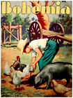 "399.Quality Interior Design poster""Farming landscape""boy feeding chickens.Nature"