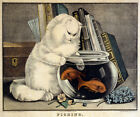 3264 Vintage Poster.Powerful Graphic Design.White Cat playing fishes. Art Decor