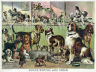 3302 Animal Vintage POSTER.Powerful Graphic Design.House Kennel Field.Dog Decor