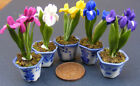 1:12 Scale Handmade Dolls House Miniature Iris Flower In A Ceramic Pot
