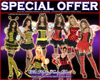 FANCY DRESS COSTUME # LADIES LADYBUG / BUMBLE BEE