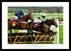 Istabraq 3rd Cheltenham Gold Cup Victory Horse Racing Photo Memorabilia (717)