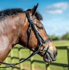 Leather Padded Bridle With FREE Rubber Reins All Sizes Black or Brown