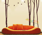 """Wall Decor Decal Sticker large birch tree trunk forest DC0184 84""""H x 100""""W"""