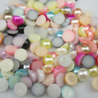 NEW 100pcs Half Pearl BeadS Flat Back 10mm Scrapbook for Craft FlatBack Colors